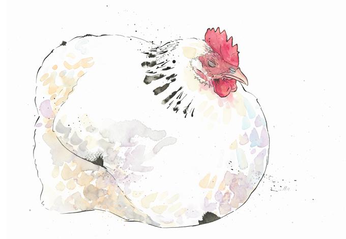 'Dame Eggna'