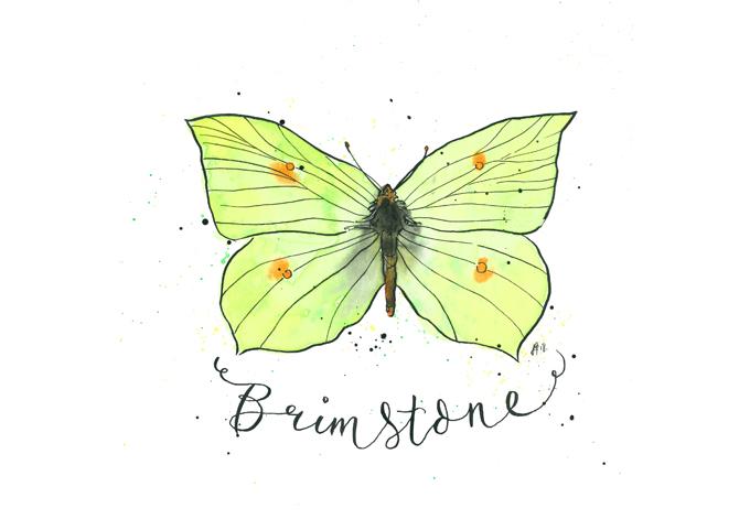 'Brimstone'